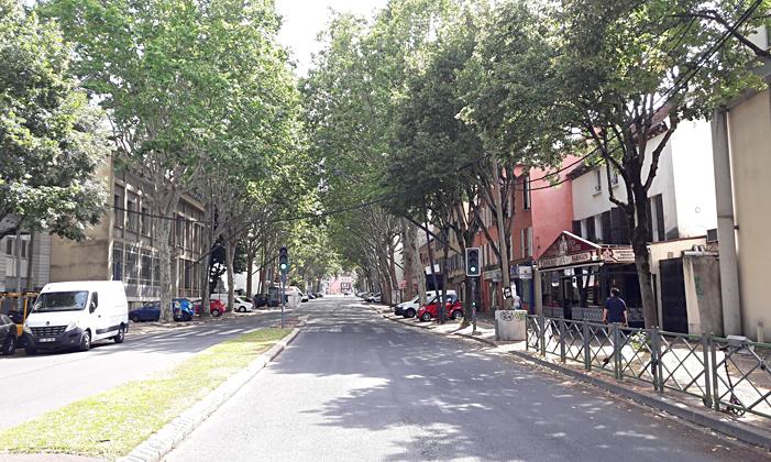 Les arbres en ville et les chantiers d'aménagement, un défi innovant pour notre siècle : adapter les travaux à l'existant