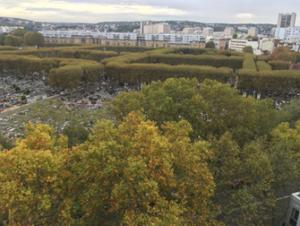 Classement patrimoine arboré du cimetière Pierre Grenier à Boulogne Billancourt